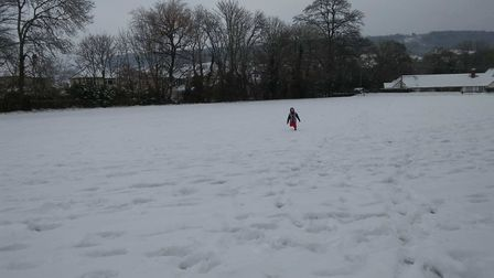 Snowy Sidmouth scenes. Picture: Lisa Bertin