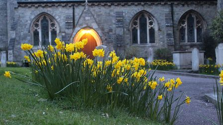 I was going for a walk in Sidmouth and saw the daffodils. I absolutely loved the church behind it wi