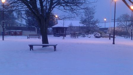 I thought I had walked into Narnia at Windsor Gardens, Seaton! Picture: Janet Powell