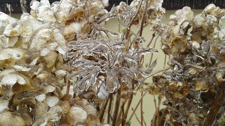 Just a glimpse of the magic of ice! Picture: Janet Powell