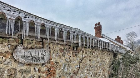 Icicles hanging from the farm roof. Picture: Lycia Moore