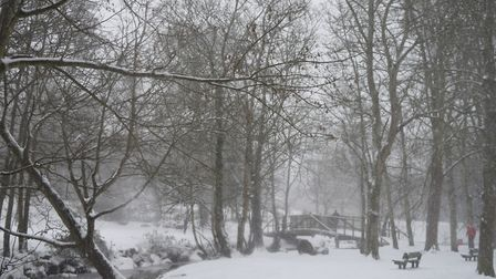A lovely walk through the Byes in the snow. Picture: Laura Rattue