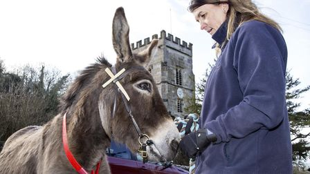 Sidmouth 25th Mar 18. Ponk the Donkey, who led worshippers up to church in the stunning seadide vill