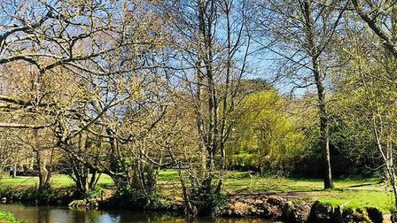 Down The Byes. Picture: Kimberley Veal