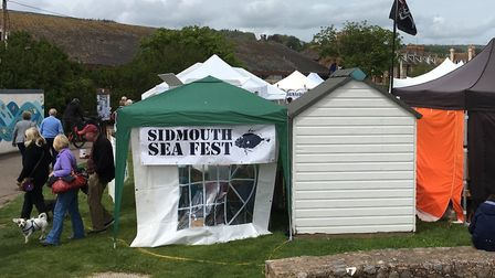 The fifth annual Sea Fest on The Ham in Sidmouth