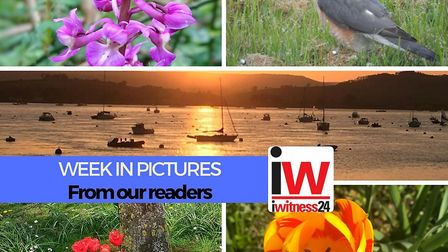 A week in pictures from around East Devon.
