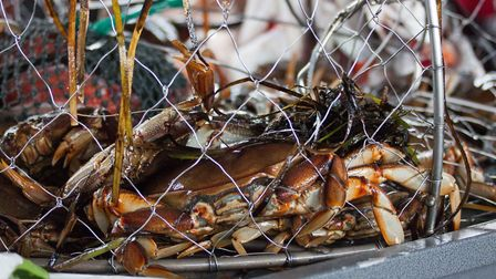 Crab - forced off the menu by scarcity