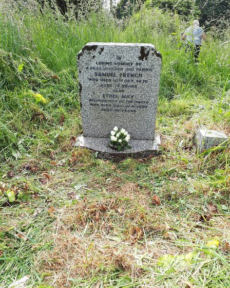Overgrown grass covering gravestones at Sidmouth Cemetry. Picture: Katherine French