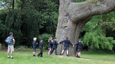 Year 5 pupils checking the girth of a 200 year-old cedar in the grounds of Sidholme.