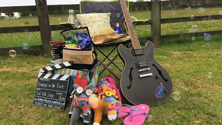 The 'Hee-Hawsome' Summer Festival at The Donkey Sanctuary will take place this weekend.