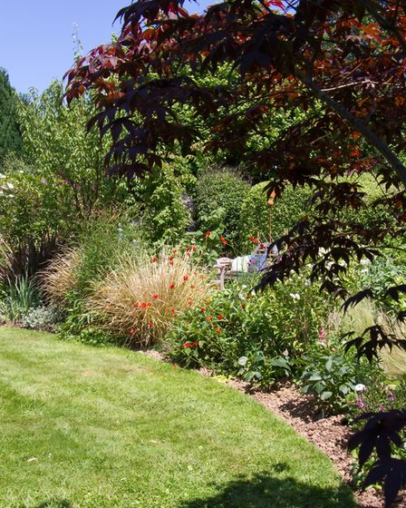 Sidmouth in Bloom open gardens. Ref shs 24 18TI 5077. Picture: Terry Ife