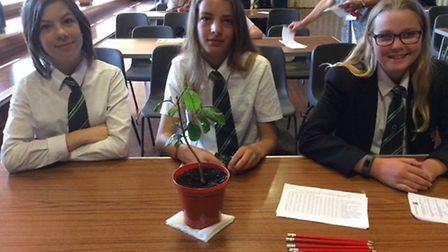 Sidmouth College students with a tea plant at event sponsored by Sidmouth Fair Trade Group