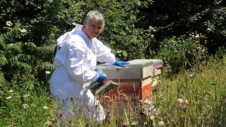 Staff member and beekeeper Jenifer Tucker with the sanctuary's own colonies of honey bees