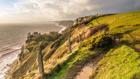 The Jurassic Coast cliff path between Beer and Branscombe. Picture: Paul Newman