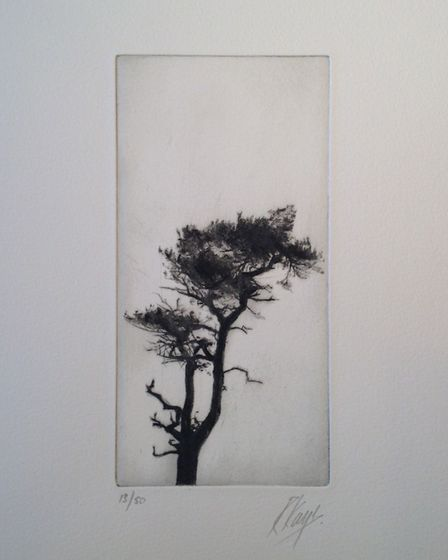 Tree, by Richard Kaye. Picture: Contributed