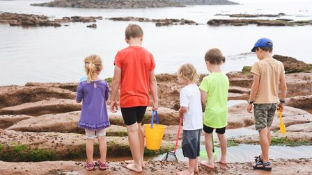 Children get ready to delve below the surface of Sidmouth's rockpools