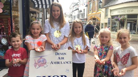 The youngsters made up their own gymnastics show to raise money for Devon Air Ambulance Trust. Pictu