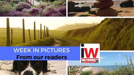A week in pictures from our East Devon iwitness24 members.