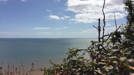A beautiful sunny day in Budleigh. Picture: Sue Babb