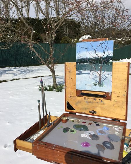 Blossoms of Snow, by Debbie Coles. Picture: Contributed