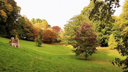 Autumn colours at Knowle.