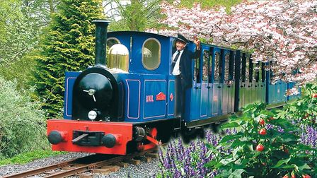 Toby's train at Bicton Park