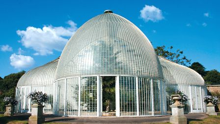 The Palm House at Bicton Park