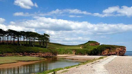 And now my favourite shot of the Estuary! Picture: Barbara Mellor