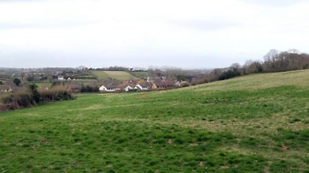 Newton Poppleford area for proposed development of 40 houses. Picture by Alex Walton. Ref shv 9458-1
