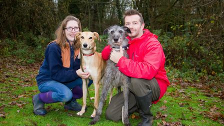 ARC staff with lurchers Romeo and Juliet. Ref shs 49 18TI 6328. Picture: Terry Ife