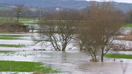 January saw heavy flooding around the region with rivers bursting their banks such as here in Colyfo