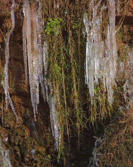 Freezing weather saw icicles develop on the cliffs at Sidmouth. Picture: Simon Horn