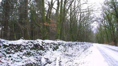 A picture postcard scene in East Hill following a snowy spell. Picture: Simon Horn