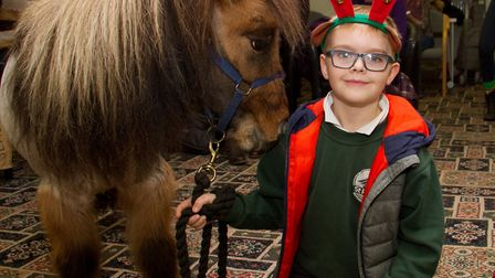 Harry Winks with his Shetland pony called Billy and Wilbur the black labrador. Ref shs 51 18TI 7000.