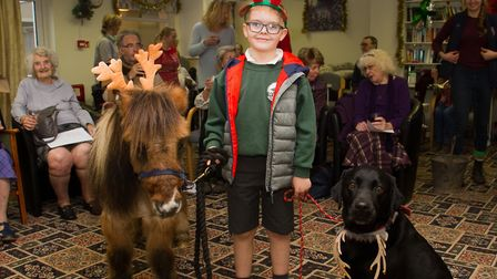 Harry Winks with his Shetland pony called Billy and Wilbur the black labrador. Ref shs 51 18TI 6997.