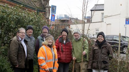 Sidmouth Arboretum planting an apricot tree in Blackmore Gardens. Picture: Sidmouth Arboretum