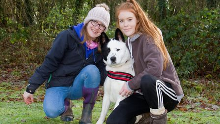 Hannah and Sarah from ARC with Ace the Akita Collie cross. Ref sho 04 19TI 8756. Picture: Terry Ife