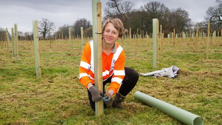 Nine thousand trees being planted in an Ottery field down by the River Otter. Ref shs 07 19TI 0115.