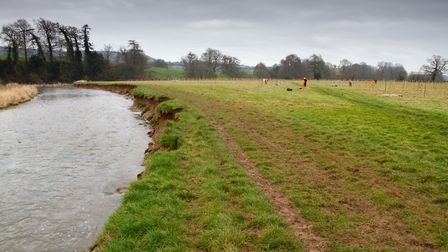 Nine thousand trees being planted in an Ottery field down by the River Otter. Ref shs 07 19TI 0106.