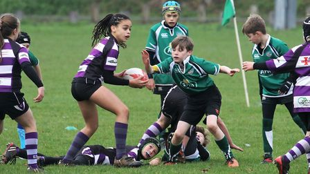 Action from the Sidmouth versus Exmouth U9 meeting. Picture: SIMON HORN