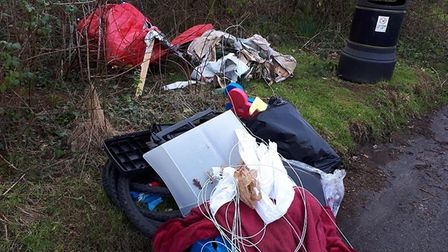 Di Fuller discovered the mess in the layby near The Bowd. Picture: Di Fuller