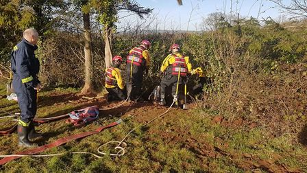 Crews from Ottery and Honiton were called to rescue a 29 year old horse from a ditch. Picture: Honit