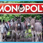 The Donkey Sanctuary Monopoly. Picture: The Donkey Sanctuary
