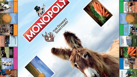 A special edition of Monopoly has been comissioned to mark The Donkey Sanctuary's 50th anniversary.