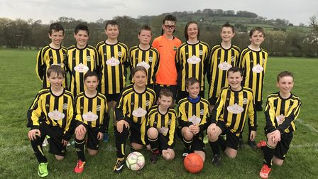 The West Hill Wasps who have just secured a grant for new goals. Picture: West Hill Wasps