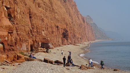 EDDC have warned about the risks of walking near crumbling cliffs. Picture: Contributed
