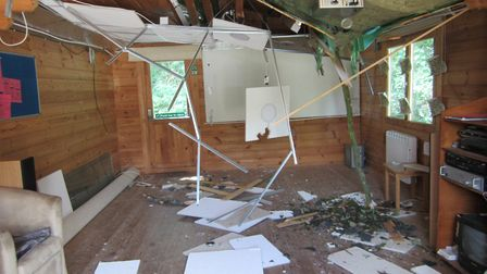 The tree that fell through the Otterhayes' roof. Picture: Otterhayes