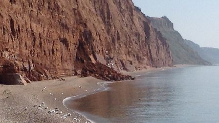 The cliff fall at East Beach was described as a landslide by the photographer. Picture: Mark Eburne