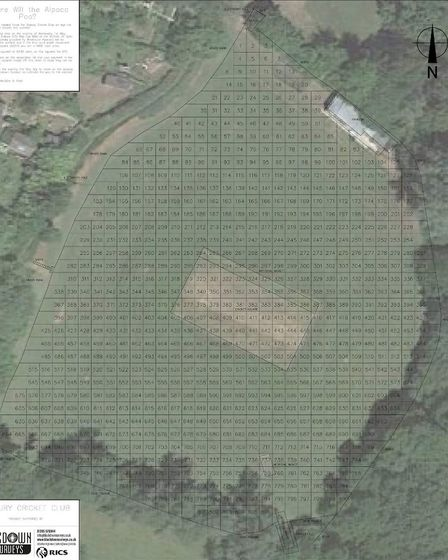 The Millfield ground will be marked up like this for the event to guess where the alpaca will poo. P