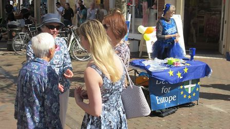 The Devon for Europe stall in Sidmouth Market Place. Picture: Devon for Europe